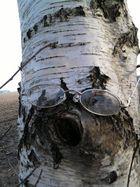 ein Blinder Baum