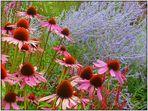 Ein Blumengruss zum Wochenende