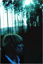 [Ein Bobes steht im Walde,...]