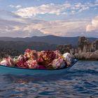 ein Boot voller Rosen