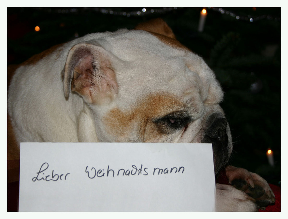 Ein Brief an den Weihnachtsmann