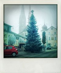 Ein Christbaum im Mühlviertel.