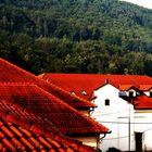 ein Dach folgt dem Anderen und dahinter der dichte Wald auf den Hängen