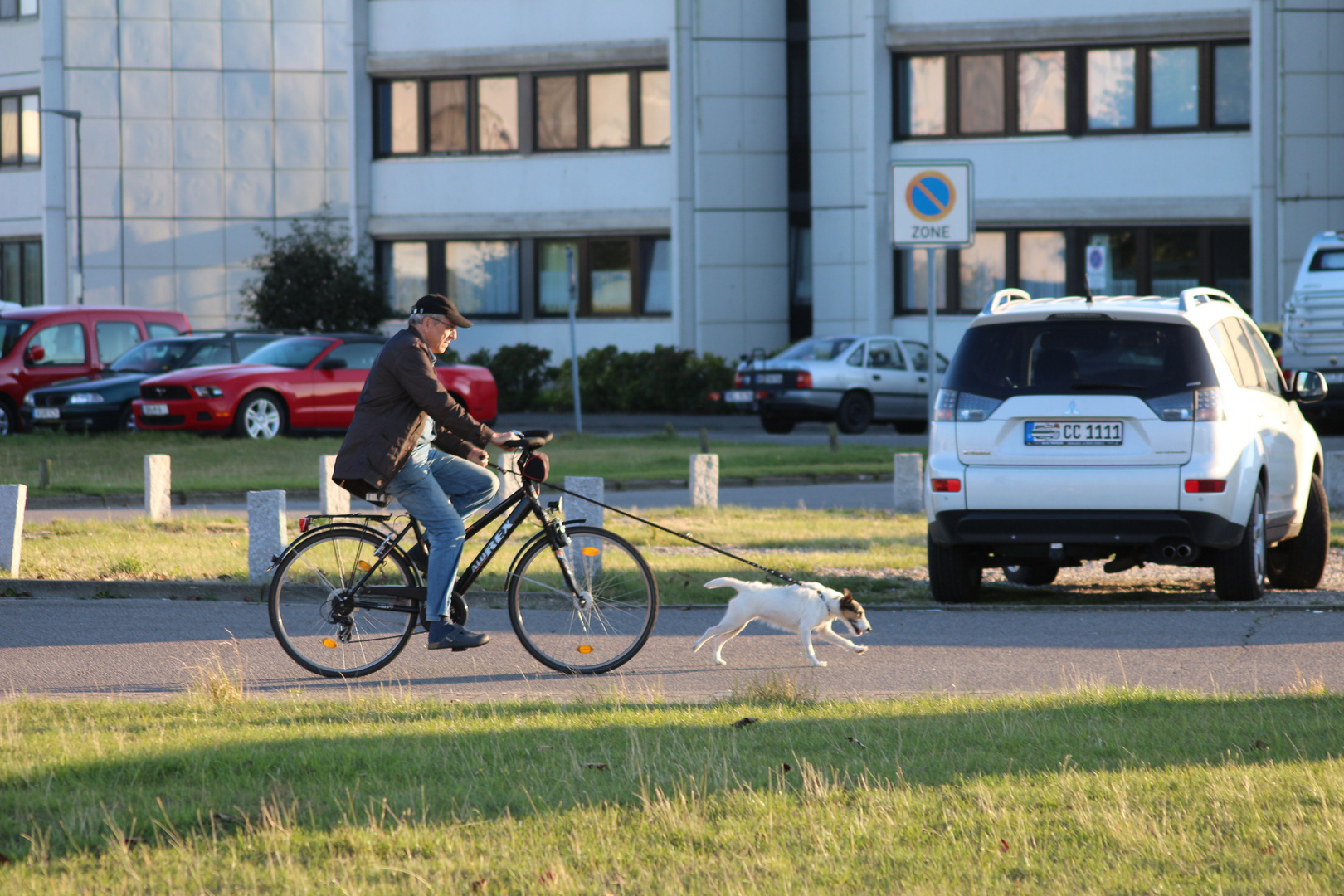 ein dog-bike..