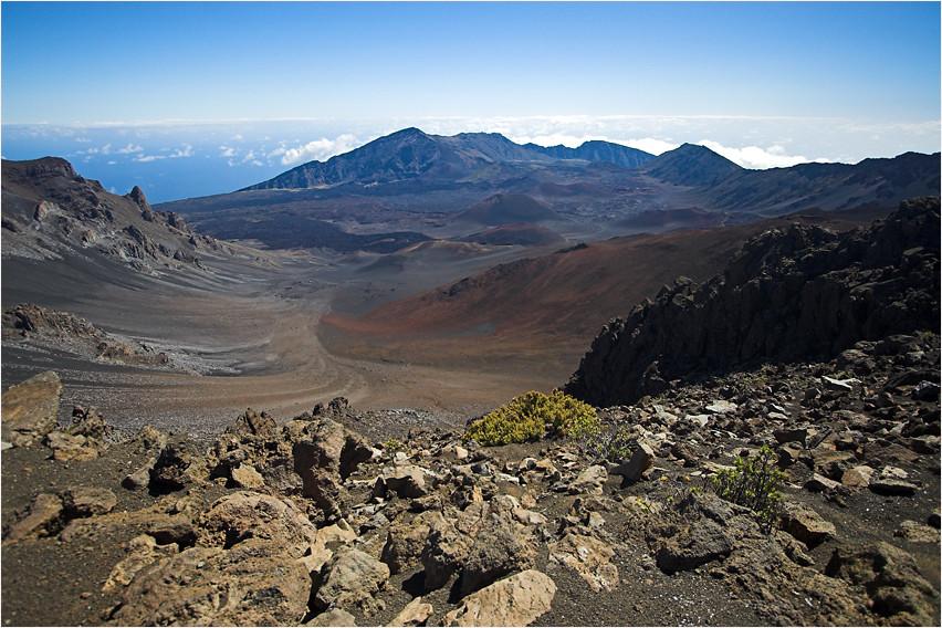 Ein Einblick ...  (Maui)