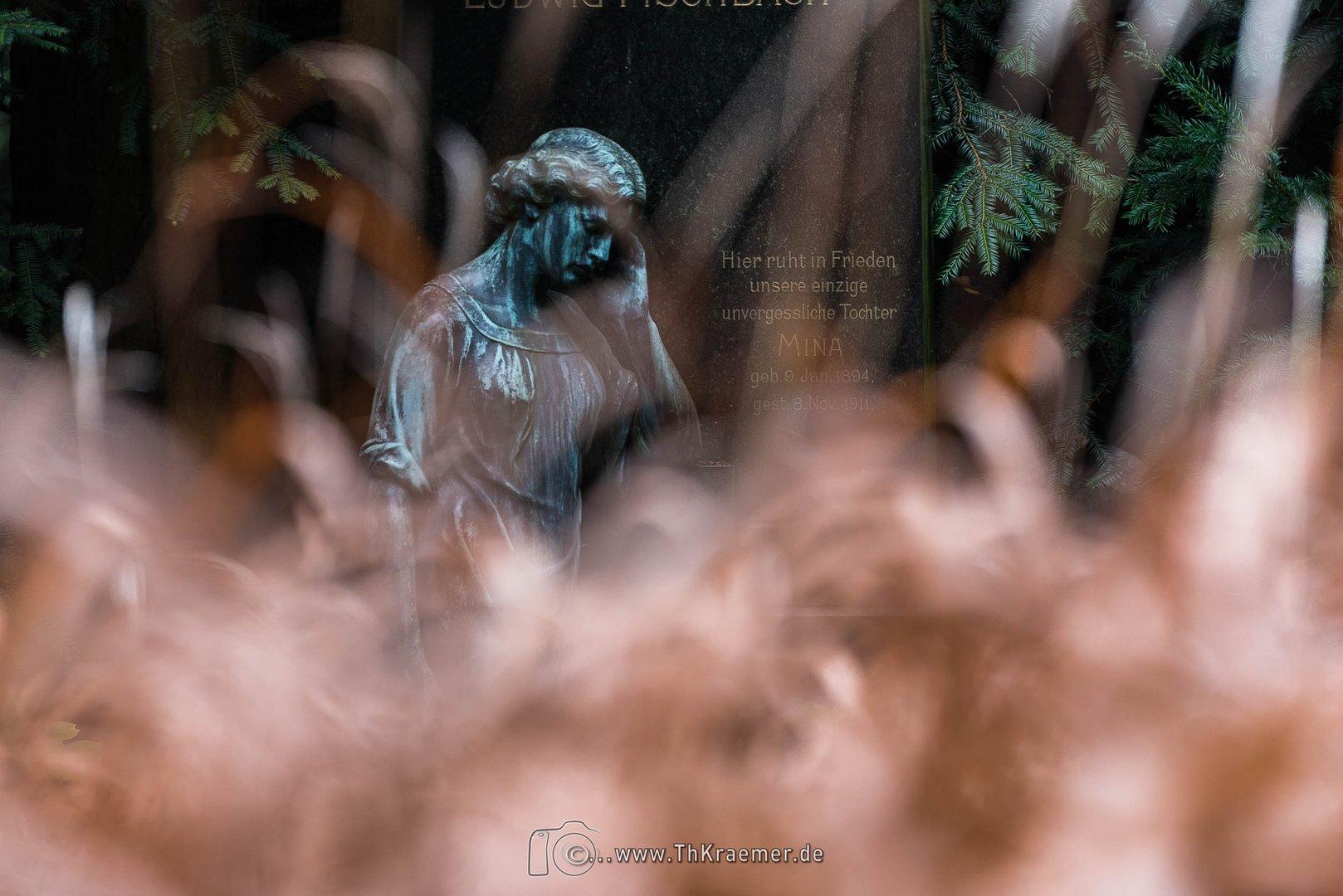 Ein Engel auf dem Ffm Hauptfriedhof D75_2445
