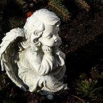 Ein Engel für Dich...