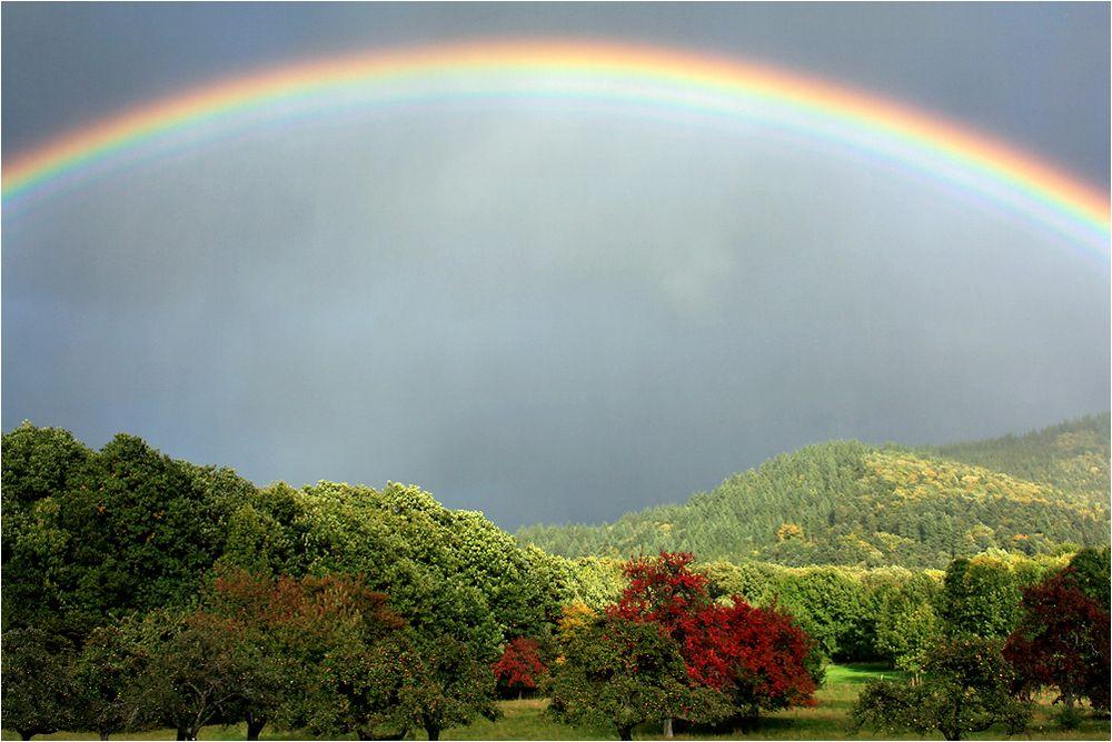 Ein Farbenbogen.....