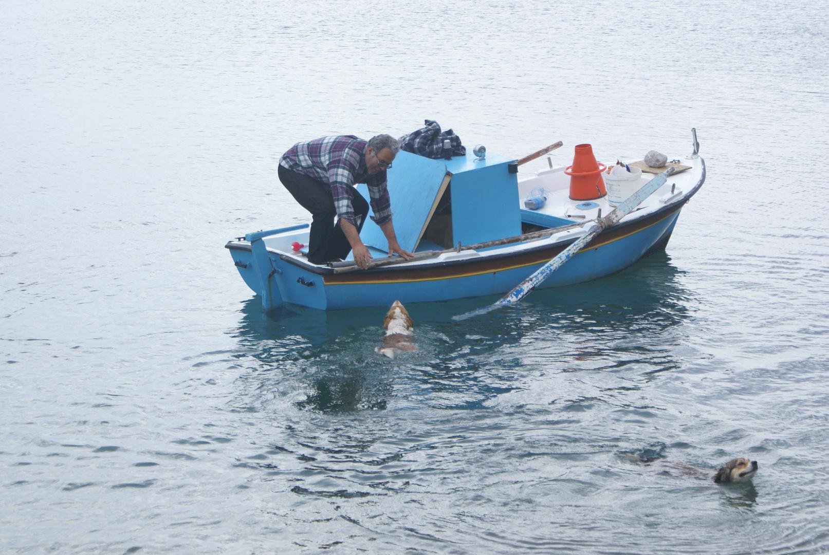 ein Fischer und seine treuen Begleiter