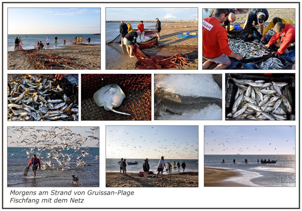 ein Fischfang am Strand......