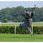 »Ein fliehendes Pferd«