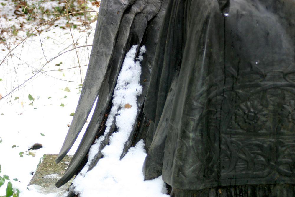 ein Flügel im Schnee