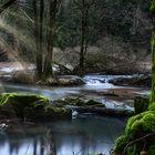 Ein Fluss im Wald