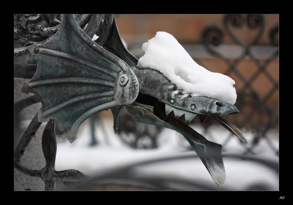Ein freches Schneemützchen