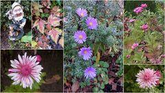 Ein fröhlicher Gartengruß