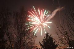 Ein frohes Neues Jahr 2013!