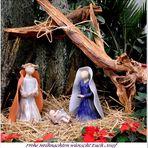 Ein frohes und besinnliches Weihnachtsfest allen Freunden und Besuchern