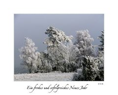 Ein frohes und erfolgreiches Neues Jahr ...