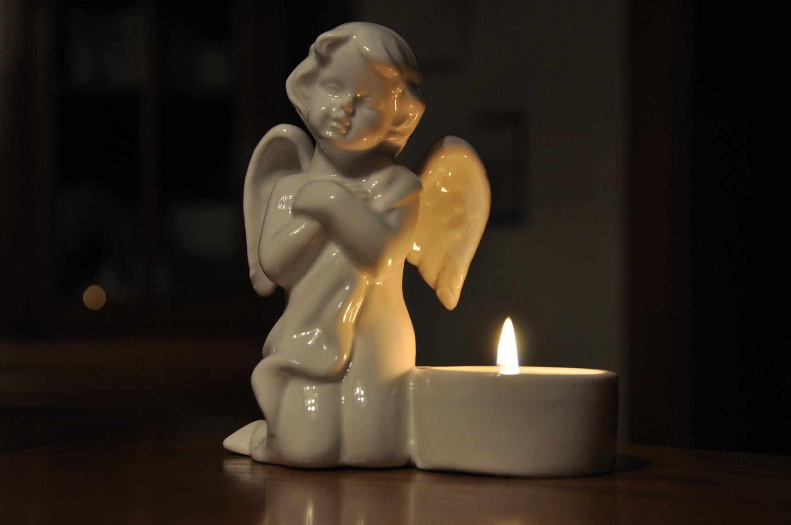 Ein frohes und gesundes 2011 wünsche ich allen