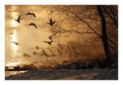 Ein frostiger Morgen 1