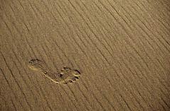 Ein Fuß