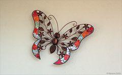Ein ganz besonderer Schmetterling...