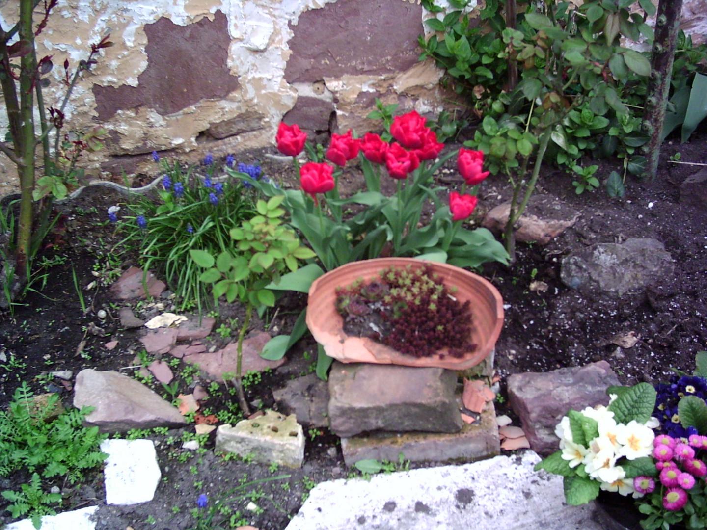 Ein Garten ganz anderst