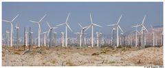 Ein gigantischer Windpark bei Palm Springs ..