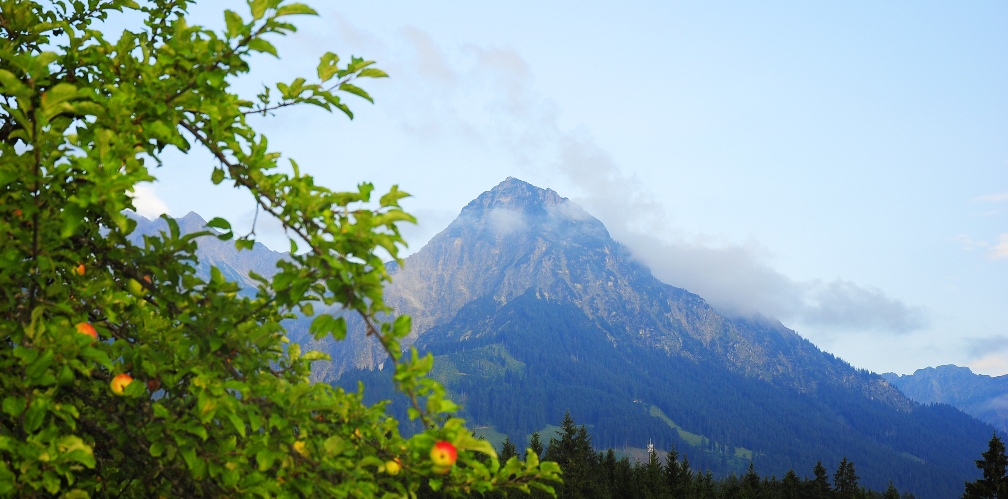 Ein glücklicher Sommermorgen in Oberstdorf