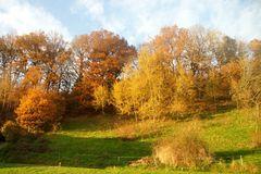 Ein goldener Herbst...