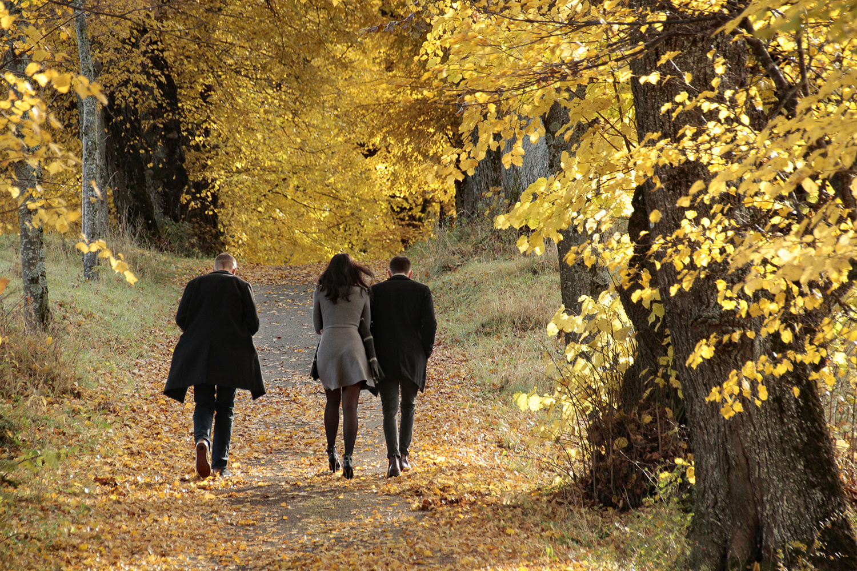 Ein goldener Herbsttag!