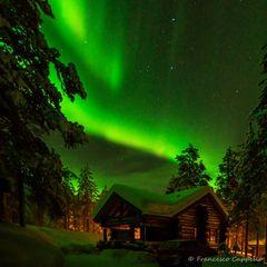 ein grünes leuchten