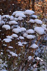 Ein Hauch von Schnee...