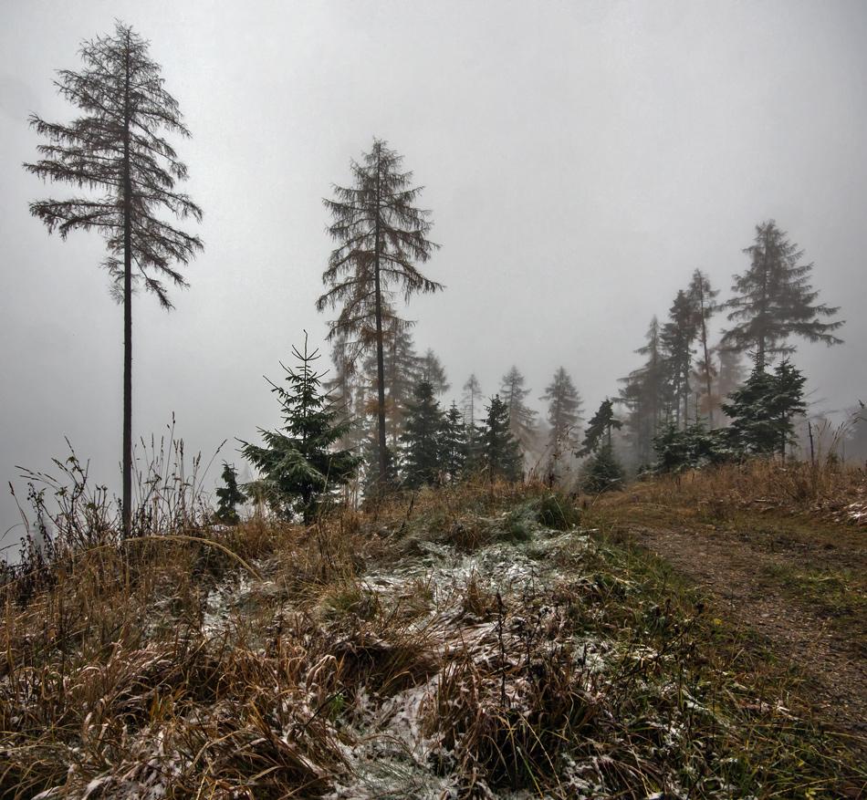 Ein Hauch von Winter!