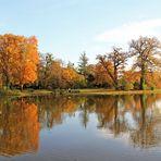 Ein herbstlicher Blick über den Wörlitzer See