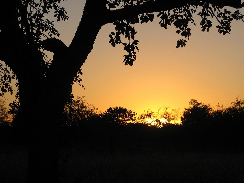 Ein herbstlicher Sonnenuntergang