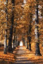 Ein Herbstmärchen...