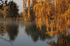 Ein Herbstmorgen am See