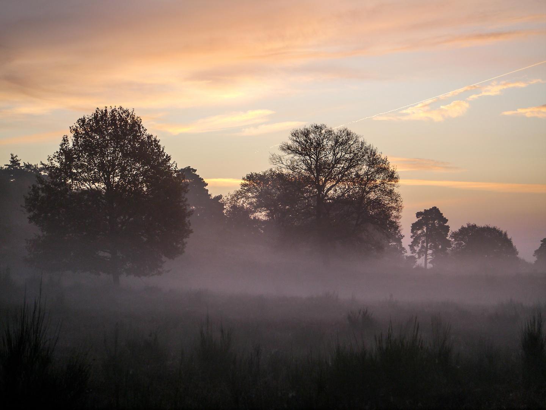 Ein Herbstmorgen