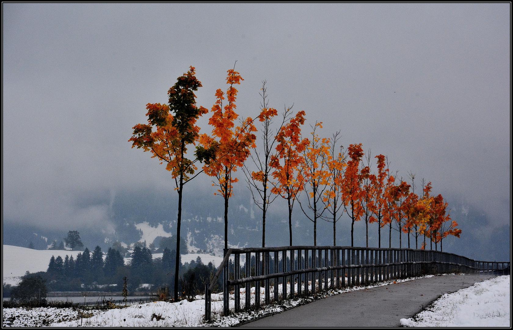 Ein Herbsttag ....