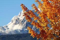 ...ein Herbsttag in den Bergen...