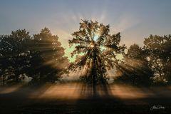 Ein herrlicher Spätsommer-Sonnenaufgang