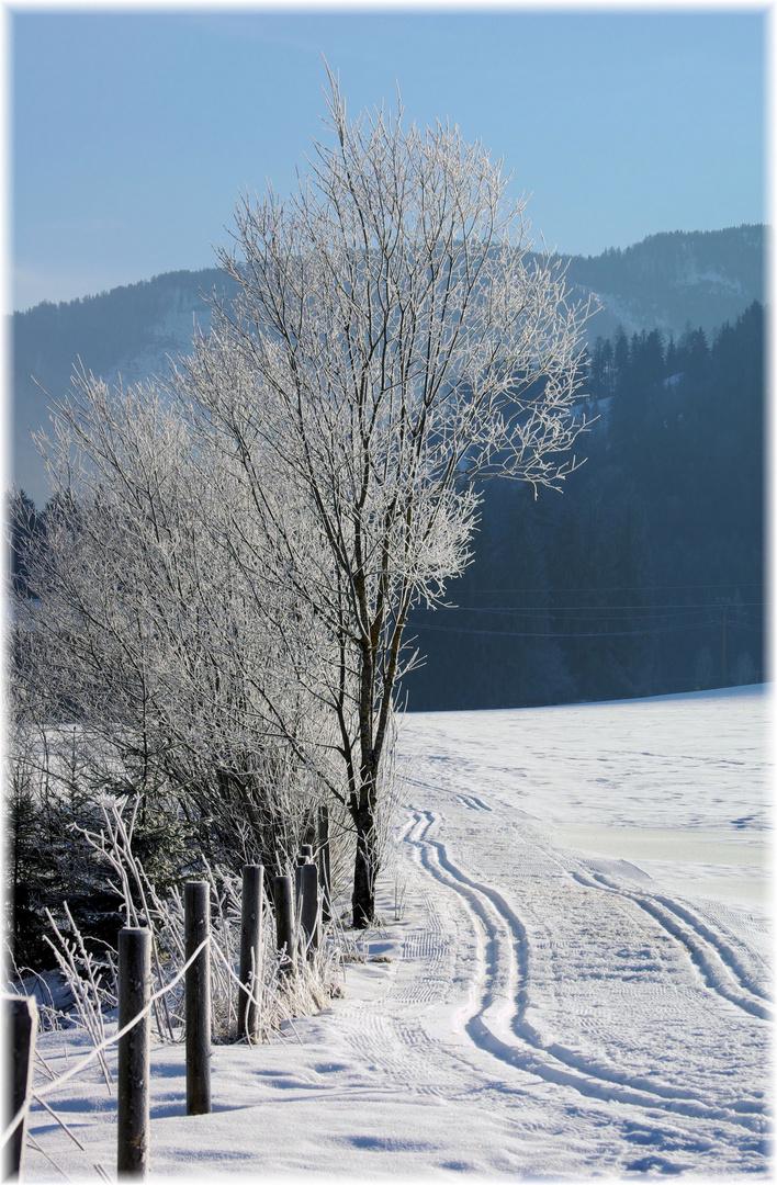 ein herrlicher Wintertag