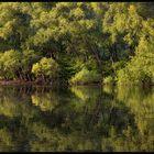 Ein Herz für die Natur... - oder: Das Herz der Natur...