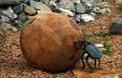 Ein Holzkäfer # Un bicho de madera