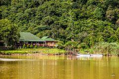 Ein Hotel im Regenwald