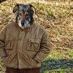 ein hund ist auch nur ein mensch