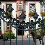 Ein hundshübscher Durchblick in Rüdesheim am Rhein