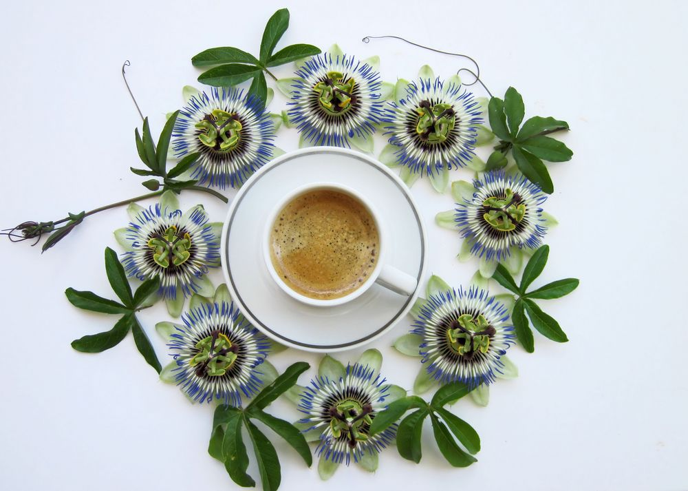 ein Kaffee am Morgen....