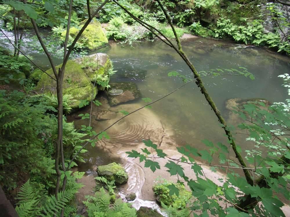 Ein kleiner See im wilden Bach